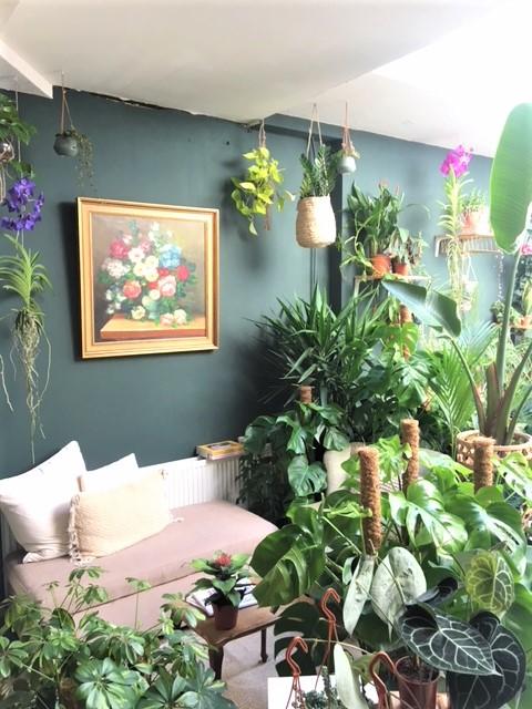 SHOP – Filya Indoor Garden